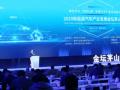 2020 新能源汽车产业发展金坛茅山峰会召开